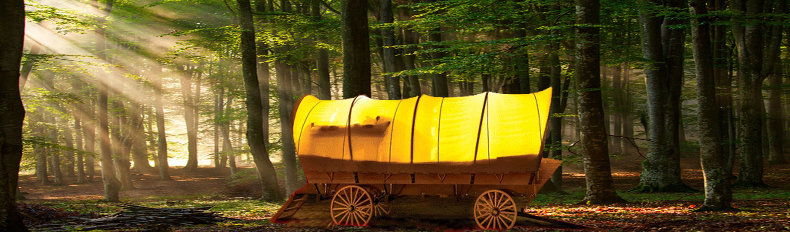 Best Glamping Destinations Wagon