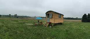 Camp Buttercup