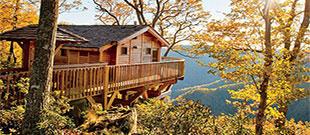 Primland Blue Ridge Mountain Resort