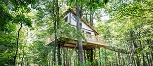 The Mohicans Treehouse